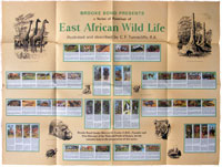East African Wild Life wallchart