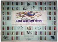 East African birds 2 wallchart